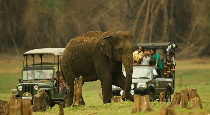 nagarhole-back-packers-group