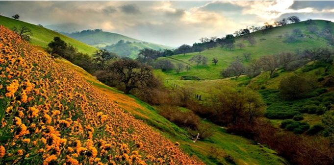 valley of flowers - The backpackers group - Heritage Site In India