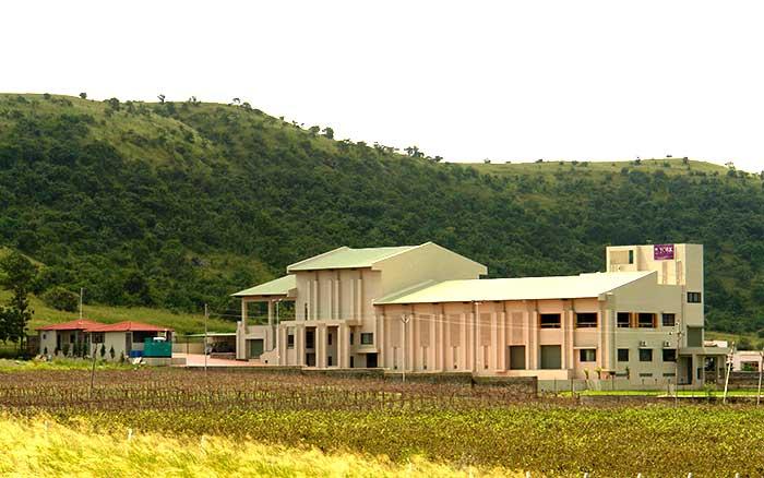York vineyard - New Weekend Gateway - The Backpackers Group - Vineyards are now new weekend gateways in India