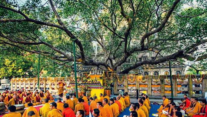 Bodhgaya - The Confluence of Cultures - Maha Bodhi Tree - Bihar - The Backpackers Group